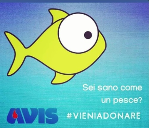 Abbiamo bisogno di te!!!